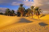 Mediterraneo arabo in cerca di credibilità