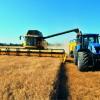 Agricoltura: proposta la semplificazione dei pagamenti Pac