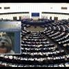 "Strasburgo pensa al ""Benessere degli Animali"""