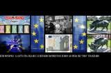 Euro – Guerra tra Falsari