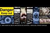 Import di Suini dagli Usa: I Pericoli della Stomatite Vescicolare