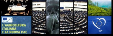European Parliament - PAC