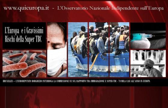 Mario Borghezio - Interrogazione alla Commissione europea del 21 marzo 2013