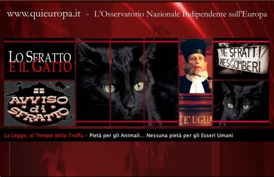 Gatto - sfratto - Monte Urano - Marche