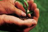 """Ue: bioeconomia, rifiuti e risorse rinnovabili.  Tiene banco il modello """"Vercelli"""""""