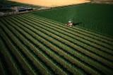 """Aiuti PAC:  dall'Ue 30 miliardi in meno dal 2013 – Con il """"greening"""" si va verso limitazioni e diversificazioni colturali"""