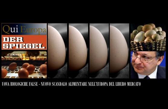 Der Spiegel - Mario Borghezio - Qui Europa