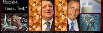 Italy - Alfatossine - Milk - Mais